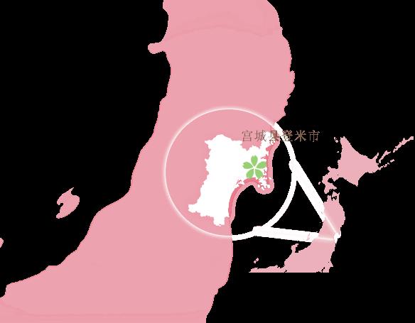 宫城县登米市
